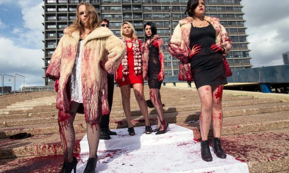 Betiltják a szőrmekereskedelmet Izraelben