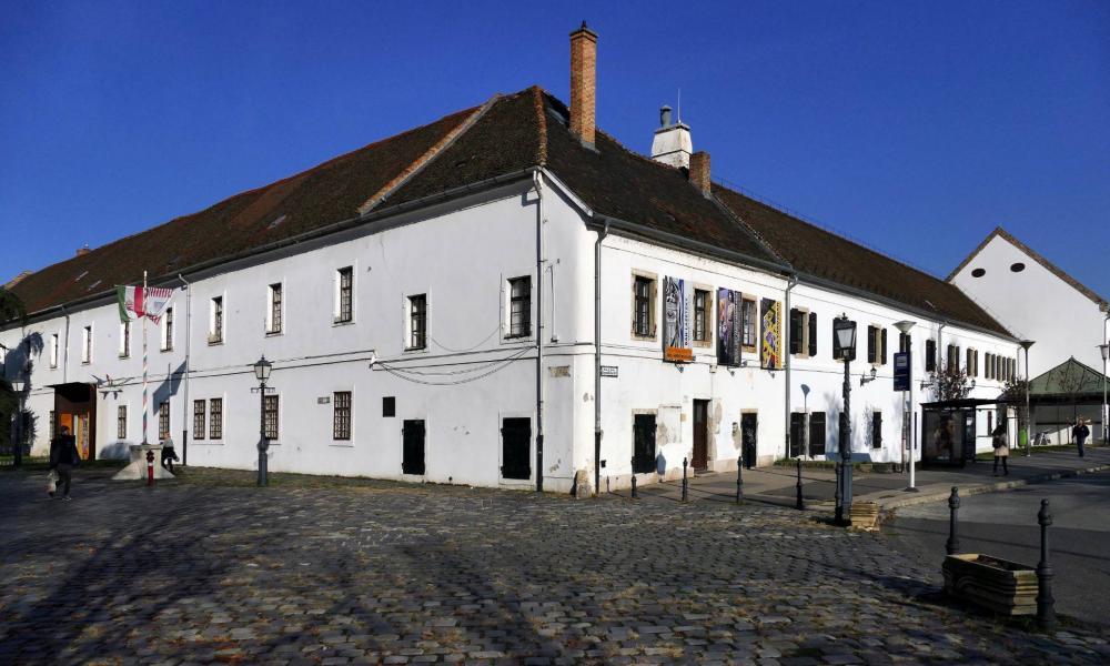 Múzeumkastélyt és írópalotát foglalhat el Demeter Szilárd