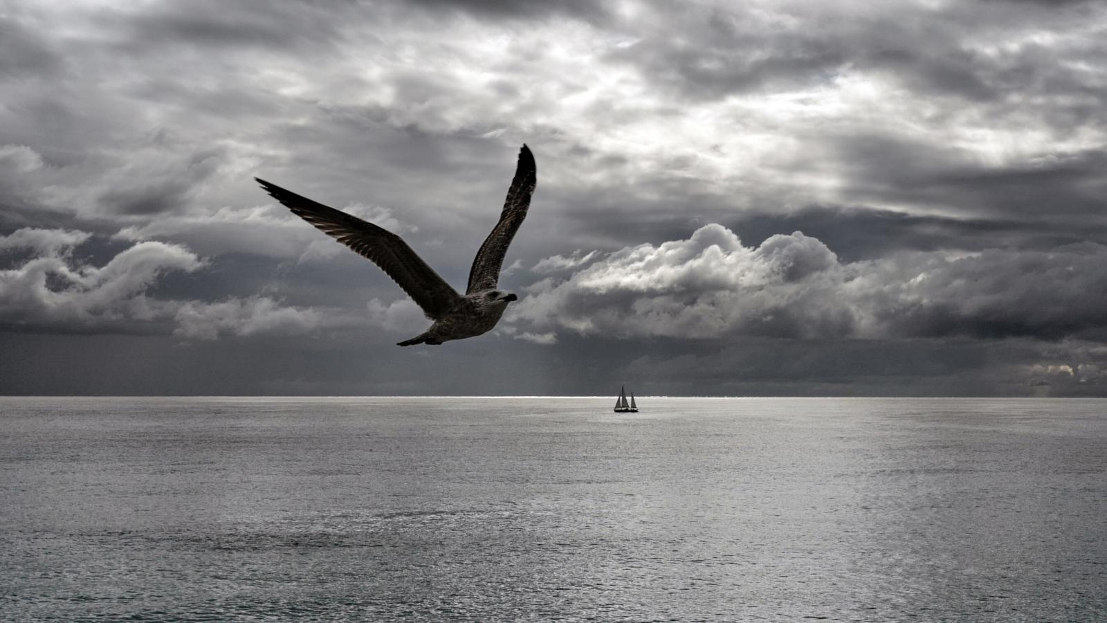 Tengerjáró hajó csatlakozási történeteket